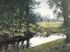 Lustenau creek